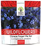 Chinese Forget Me Not Wildflower Seeds - Bulk 1 Ounce Packet - Over 5,500 Open Pollinated Seeds - Blue Cynoglossum amabile