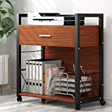 Tribesigns Mobile Printer Stand, Modern Lateral File Cabinets, Computer Side Table Printer Cart Machine Stand with 4 Rolling Wheels and Storage Drawer for Home Office, Metal Frame Mahogany Brown