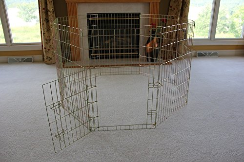 EliteField Gold Zinc Exercise Pen with Free Ground Anchors, 5 (36' Exercise Pen)