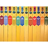 Nag Champa Spa Incense Popular Fragrances Sampler - 12 Boxes (15 Sticks Ea) Nag Champa, Sandalwood, Patchouli, Lavender, Jasmine, Frankincense, Himalayan Cedar, French Vanilla, Egyptian Musk, Kashmir Rose & Cinnamon