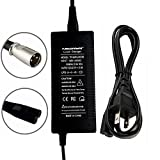 36V 2A XLR Lithium Battery Charger E-Bike Electric Scooter Bicycle Tricycle Battery Charge for Mini Dirt Bike 650 Power Wheelchair