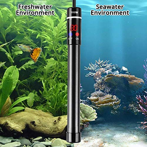 MQ Titanium Alloy 50/200W Aquarium Heater for Salt and Fresh Water, Digital LED Display Submersible Heater with External Thermostat Controller, for Fish Tank 5-40Gallon 2