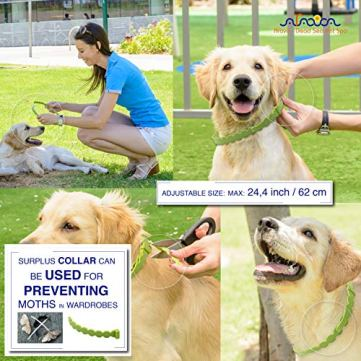 Arava-Flea-Tick-Prevention-Collar-for-Dogs-Puppies-Length-25-11-Natural-Active-Ingredients-Safe-for-Babies-Pets-Safely-Repels-Pests-Enhanced-Control-Defense-6-Months-Protection