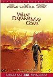 What Dreams May Come poster thumbnail