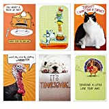 Hallmark Funny Shoebox Funny Thanksgiving Card Assortment (6 Cards with Envelopes)