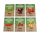 Organic Heirloom Cherry Tomato Garden Seeds – 6 Non-GMO Varieties: Yellow Pear, Chadwick Cherry, Black Cherry, Rainbow Cherry, Roma & Green Zebra