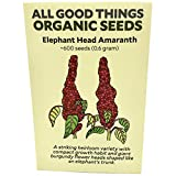 Elephant Head Amaranth Seeds (~600): Certified Organic, Non-GMO, Heirloom, Open Pollinated Seeds from The United States