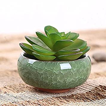 Buy Meet The World Home Decoration Accessories Decorative Flower Pots For Juicy Plants Ceramic Flowerpots Small Bonsai Pot Ceramica Online At Low Prices In India Amazon In
