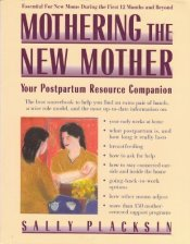 pregnant and postpartum mothering the new mother