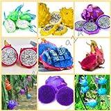 50pcs/ bag rare 9 kinds of pitaya seeds, very beautiful fruit seeds dragon fruit seeds mix