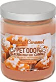 Specialty Pet Products Pet Odor Exterminator Candle, Salted Caramel,13 oz