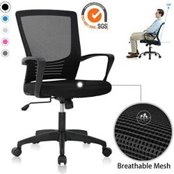 Ergonomic Office Chair Mesh Computer Chair with Lumbar Support and Armrest Swivel Chair Rolling Adjustable Desk Chair,Black