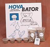 Hova-Bator Still Air Egg Incubator Kit for Reptiles