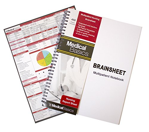 Nursing Brain Sheet Multiple Patient Notebook - Nurse and CNA Report Sheet - 3 Patients per Template