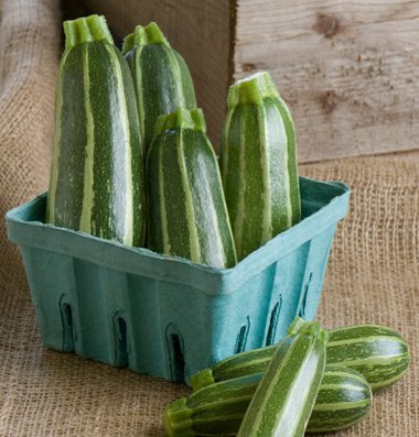 Bush Baby Zucchini Summer Squash 15 seeds