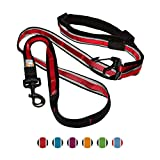 Kurgo 6 In 1 Quantum Dog Leash | Multi-Functional Hands Free Leash for Dogs | Reflective & Adjustable 6' Lead | Dog Waist Running Belt | Padded Handle | for Training, Hiking, Or Jogging | Raspberry