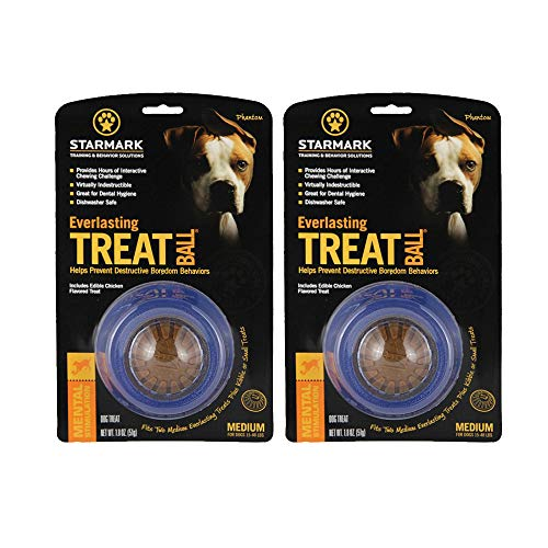 StarMark Everlasting Treat Ball, Medium - 2 Pack 1
