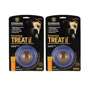 StarMark Everlasting Treat Ball, Medium – 2 Pack