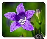 Mouse Pads - Bluebells Campanula Portenschlagiana