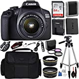 Canon EOS 2000D (Rebel T7) Digital SLR Camera with 18-55mm is II Lens Kit (Black) Professional Accessory Bundle Package Includes: SanDisk Ultra 64GB SDXC Memory Card + 50'' Tripod + Filters and More