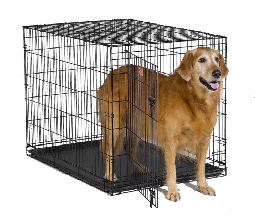 "MidWest iCrate 42"" Folding Metal Dog Crate w/ Divider Panel, Floor Protecting ""Roller"" Feet & Leak-Proof Plastic Tray; 42L x 30W x 28H Inches, Large Dog Breed"