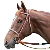 Product review for Intrepid International Leather Race Bridle
