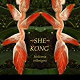 ~SHE KONG~ Heliconia Vellerigera TROPICAL EXOTIC LIVE Potd PLANT Not just a root