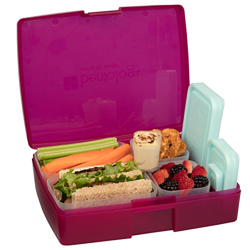 Leak-proof Bento Lunch Box with 5 Removable Containers (Translucent Raspberry)