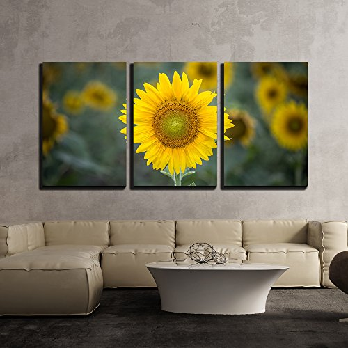 Bright bold and charming sunflower wall decorations for Sunflower home decor