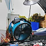 XPOWER FC-300 Professional Grade Air Circulator, Utility Fan, Carpet Dryer, Floor Blower-14 Diameter Heavy Duty Portable Shop, Blue