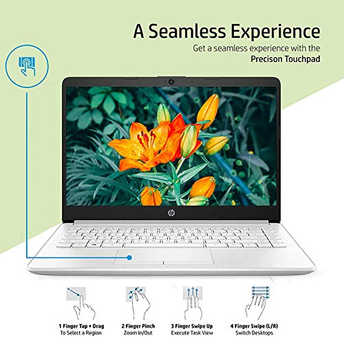 """51Eh9notAKL HP 14 10th Gen Intel Core i3 Processor 14"""" (35.56cms) FHD Laptop computer (4GB/1TB HDD/Home windows 10 House/MS Workplace/Pure Silver/1.47Kg), 14s-cf3006tu"""