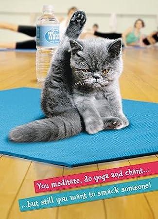 Avanti greeting cards uk diydrysite avanti press yoga cat greeting card co uk office products m4hsunfo