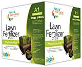 Natural Alternative Early Spring Fertilizer 21-0-4 Enriched with Protilizer Seed & Plant Activator Application 1 (25005)