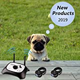 OKPET Wireless Dog Fence Pet Containment System, Safe Effective Beep/Shock Dog Fence, Adjustable Control Range 1000 Ft & Display Distance, Rechargeable Waterproof Collar (2 Dog System)