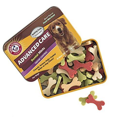 Arm-Hammer-Dog-Dental-Care-Tartar-Control-Dental-Mints-for-Dogs-Reduces-Plaque-Tartar-Buildup-Without-Brushing-17-ounces-40-Pcs-Beef-Flavor