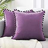 Top Finel Decorative Throw Pillow Cases Soft Particles Velvet Solid Cushion Covers 20 X 20 for Couch Bedroom Car, Pack of 2, Purple
