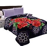 JML Heavy Thick Plush Velvet Korean Style Mink Blanket, Two Ply Reversible Raschel Blanket with One Side Embossed, King and Queen, Purple