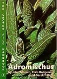 Adromischus: The Cactus File Handbook: The Cacts File Handbook by John Pilbeam (1998-05-01)