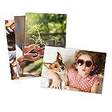 Photo Prints - Matte - Standard Size (4x6)