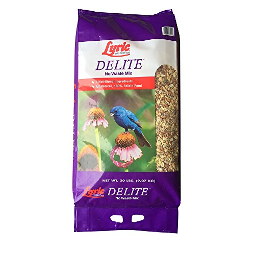 Lyric 2647462 Delite High Protein No Waste Wild Bird Mix - 20 lb.