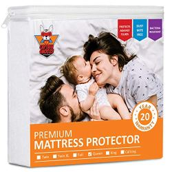 CAPTAIN SNOOZE Waterproof Mattress Protector Queen Size, Fitted Sheet Mattress Protector Upto 18 inches Deep Pocket, Cotton Terry Surface, Vinyl Free, Premium Queen Mattress Protector