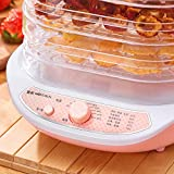Dried Fruit Vegetables Meat Hoehold Food Dehydrator Meat Dehydrated 3 trays Air Dryer