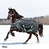 Product review for Kensington Platinum Collection 1680D Heavy Weight Turnout Blanket, 75, Onyx