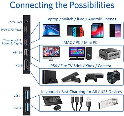 Portable Monitor 4K - 17.3 Inch UHD FreeSync HDR IPS 100% Adobe RGB 3840x2160 Lightweight Eye Care Computer Display with Type-C Mini DP HDMI for Xbox PS4 Switch Laptop PC Phone Mac, with Smart Case 15