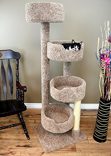 9 Best Cat Trees For Large Cats And Cat Furniture You And