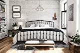 Novogratz 4044049N Bushwick Metal Bed, King, Black