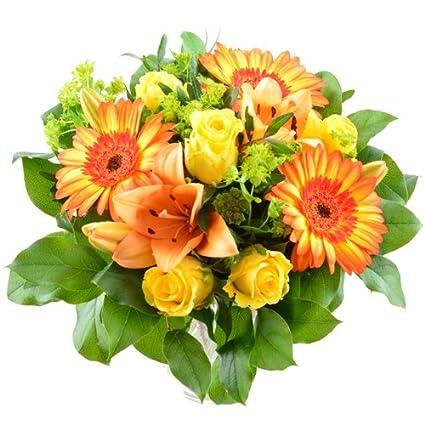 Blumenversand Blumenstrauß Zum Geburtstag Sonnenstrahl Mit Leuchtenden Gerbera Sunspot Mit Gratis Grußkarte Zum Wunschtermin Versenden