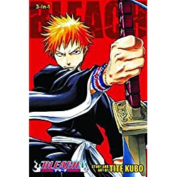 Bleach 3-In-1, Volume 1