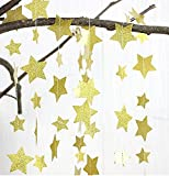 Christmas Gold Glittery Star Garland Decoration 5 Meters Elegant Shiny and Sparkling 16 Feet Long Party Background Decor. Ideal For Weddings, Birthday Parties, Bridal Showers, Holidays, Baby Showers.