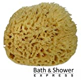 "Sea Wool Sponge 6-7"" (X-Large) by Bath & Shower Express Natural Renewable Resource!"